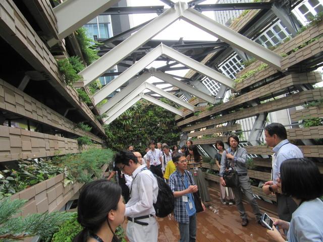 屋上緑化庭園見学